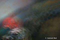 ©-Antoni-Rut-Rytmy-swiatow-V-foto-grafika-70x100cm