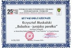 283-Bobolice