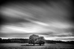 19_Krajobraz-Bliźniaki