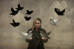 Origami-birds-keeper